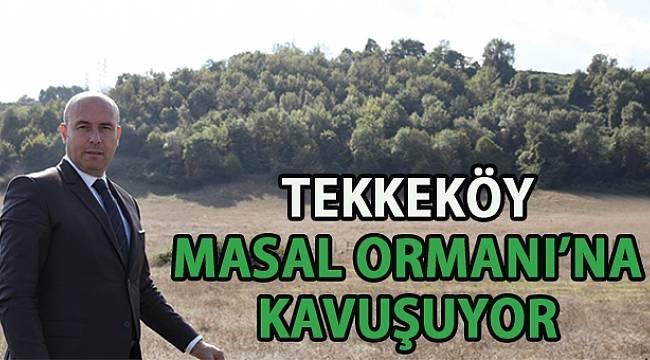 SAMSUN HABER - Tekkeköy 'Masal Ormanı' projesiyle adından söz ettirecek