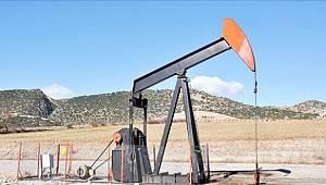 Karadeniz'de petrol ve jeotermal kaynak aranacak