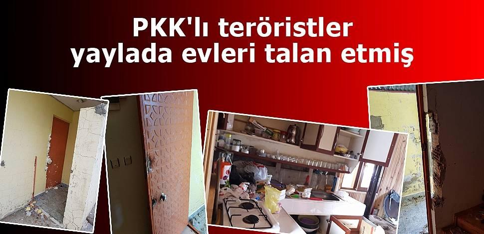 PKK'lı teröristler yaylada evleri talan etmiş