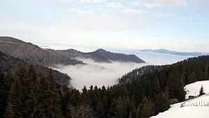 Giresun yaylaları ve sis: Harika görüntüler