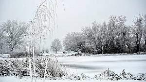 Polonya ve Çekya'da soğuk hava can aldı