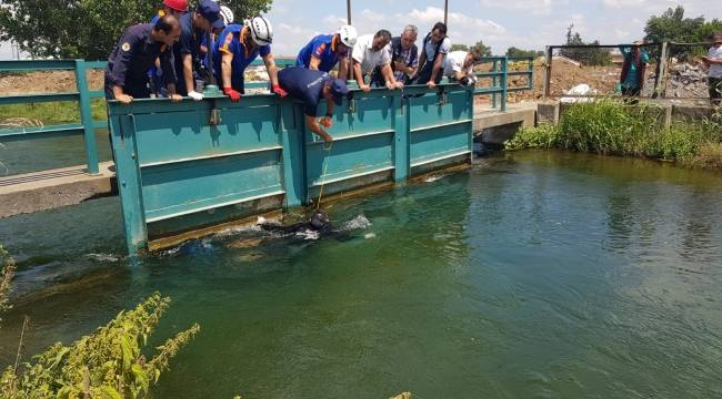 Samsun'da sulama kanalında ceset bulundu