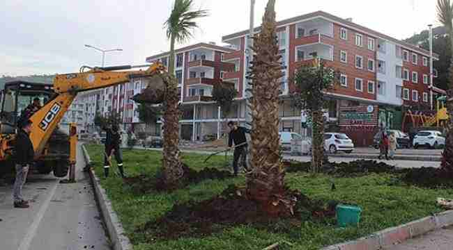 Tekkeköy'de çevre düzenleme çalışmaları devam ediyor