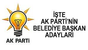 AK Parti'nin Samsun adayları belli oldu