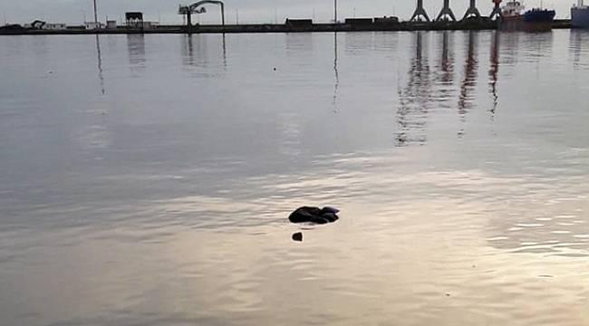 Samsun'da deniz kenarında erkek cesedi bulundu