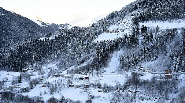 Tarihi İpek Yolu'ndaki Zigana Dağı'nda kış güzelliği