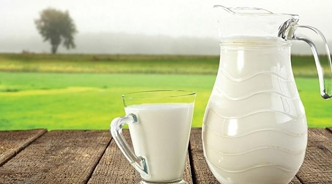 Türkiye'de süt üretimi azaldı