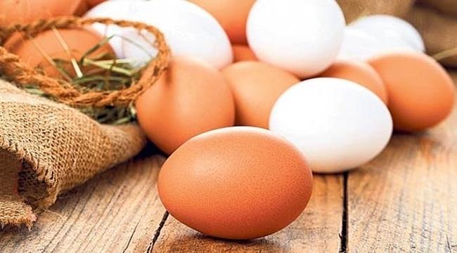 Samsun'da yumurtanın içinden bakın ne çıktı