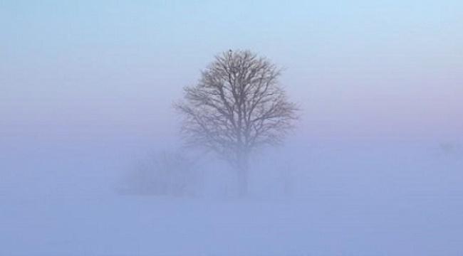 Samsun Haber -  Samsunlular puslu ve sisli havaya dikkat