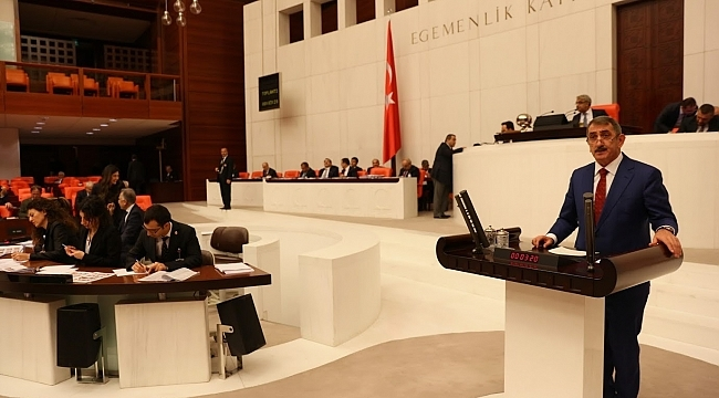 Milletvekili Köktaş Meclis'te konuştu