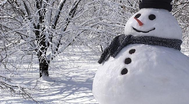 Samsun'a kar geliyor