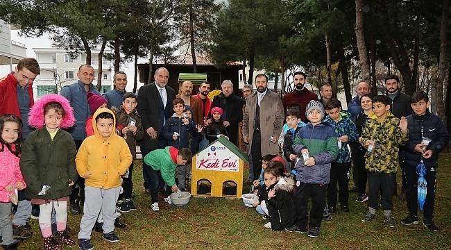 Samsun Haber - Canik Belediyesi'nden sokak hayvanlarına mama