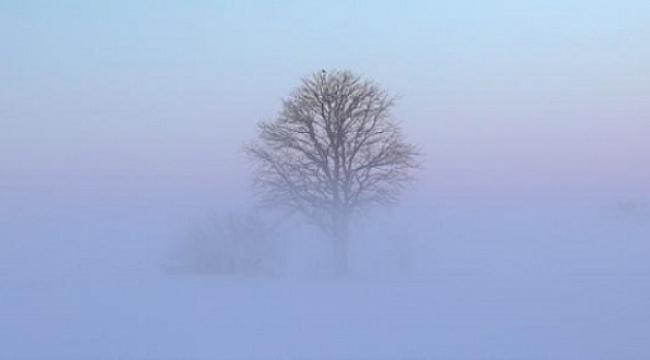 Samsun Haber - Samsun'da sisli ve puslu havaya dikkat