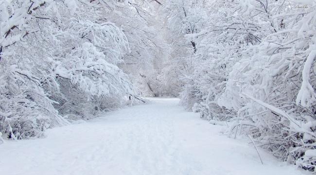 Samsun Haber - Samsun'da gündem kış tedbirleri