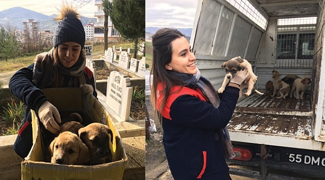 Başkan Demirtaş'tan sokak hayvanları için duyarlılık çağrısı