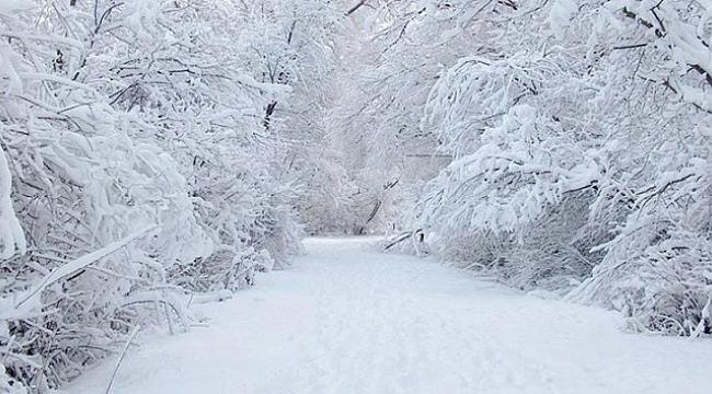 Samsun Haber - Samsun'un o ilçeleri dikkat: Kar geliyor