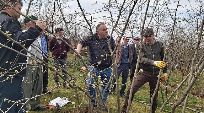 Tekkeköy Belediyesi'nden çiftçilere uygulamalı eğitim