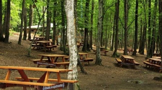 Samsun'da piknik yapan kişiye para cezası
