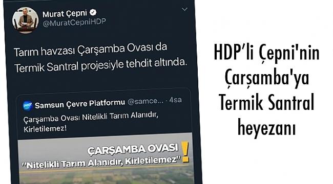 HDP'li Çepni'nin Çarşamba'ya Termik Santral heyezanı