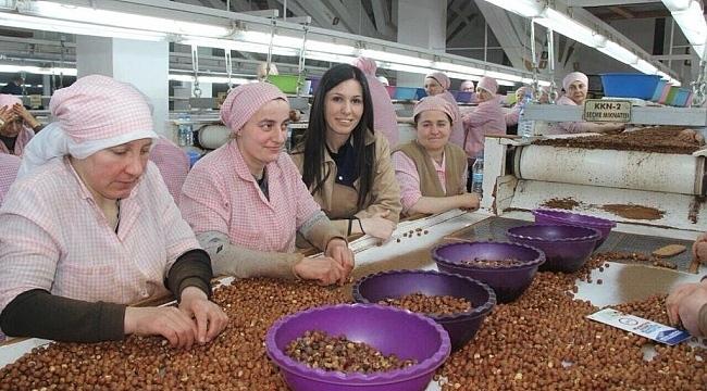Karaaslan: Samsunlu üreticilerimiz fındık fiyatlarından memnun