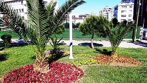 samsun haber - İlkadım'da parklar rengarenk