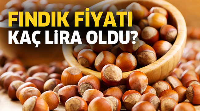 Samsun Haber- 21 Eylül güncel fındık fiyatları