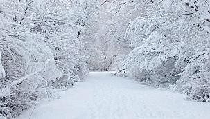 Samsun'un doğu kesimlerine kar uyarısı