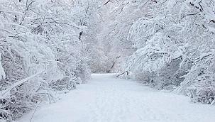 Samsun'un yüksek kesimlerine kar uyarısı